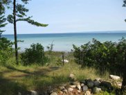 Nine Mile Point, Lot 46, Charlevoix image