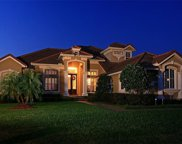 11237 Macaw Court, Windermere image