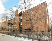 2225 North Halsted Street Unit 28, Chicago image