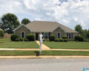 100 Greenfield Cir, Alabaster image