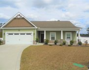 736 Londonberry Ct, Conway image