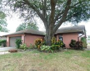 11840 Cedarfield Drive, Riverview image