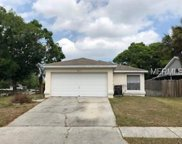 4602 S Country Hills Court, Plant City image