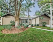 197 Winding Willow Drive, Palm Harbor image