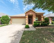 12324 Dogwood Springs Drive, Fort Worth image