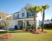 215 Carriage Hill Place, Wando image
