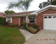 49 Freshwater Drive, Palm Harbor image