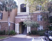 2407 Courtney Meadows Court Unit 103, Tampa image