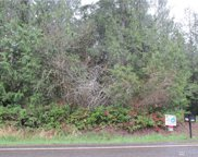 0 XXX Steamboat Island Rd, Olympia image