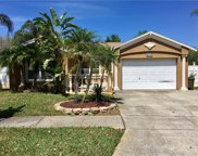 5117 Spike Horn Drive, New Port Richey image