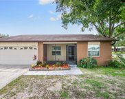 423 Hickory Tree Circle, Seffner image