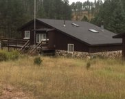 25063 Upper French Creek Road, Custer image