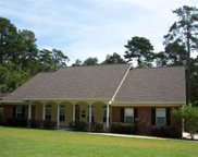 1545 Spruce, Tallahassee image