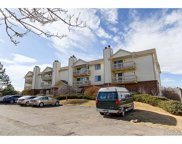 491 South Kalispell Way Unit 305, Aurora image
