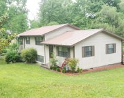 395 Carson Rd, Helenwood image