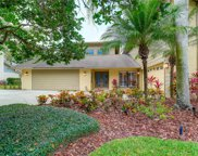 4205 Winding Willow Drive, Tampa image