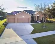 3517 Tumbling River Drive, Clermont image