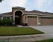 15611 Starling Water Drive, Lithia image