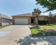 8712 Muir Drive, Fort Worth image
