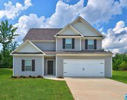345 Farmhouse Ln, Springville image