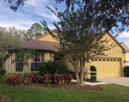 10405 Edgefield Place, Tampa image