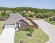 2225 Louis Trail, Weatherford image