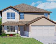 964 Brown Thrasher, San Antonio image