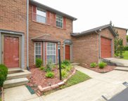 614 Hickory Glade Ct Unit #614, Antioch image