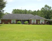 780 Piney Ln, Cantonment image