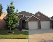 209 Park Meadows, Euless image