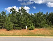 Lot N-50 Eutaw Spring Trail, North Augusta image