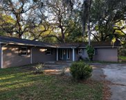 285 W Oak Hill Road, Mount Dora image