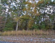LT 2 Serenity Ridge, Blairsville image