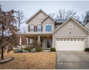 8003  Sweet Grove Court, Charlotte image