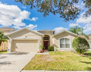 19130 Cypress Reach Lane, Tampa image