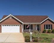 104 Pink Blossom Court, Greenville image
