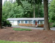 15233 Tiger Mountain Rd SE, Issaquah image