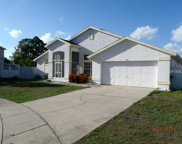 2303 Courtland Place, Kissimmee image