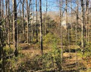 25175 Circle Slope Drive, Simpsonville image