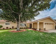 3119 Teal Terrace, Safety Harbor image