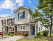671 Potter Place  Road, Fort Mill image