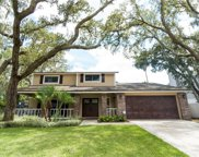 1419 Clarion Drive, Valrico image
