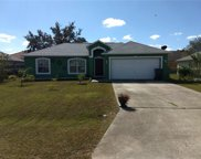 308 Puffer, Poinciana image