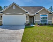 769 Old Castle Loop, Myrtle Beach image
