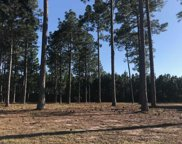 Lot 360 Summer Rose Lane, Myrtle Beach image