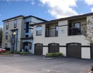 8413 Lucuya Way Unit 306, Temple Terrace image
