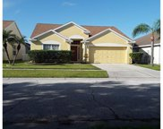 10529 Walker Vista Drive, Riverview image