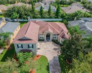 1109 Carriage Park Drive, Valrico image