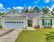 105 Lilly Pond Court, Conway image
