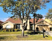 12432 Bristol Commons Circle, Tampa image